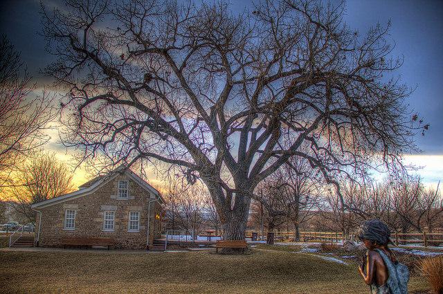 Stone House and tree near sunset