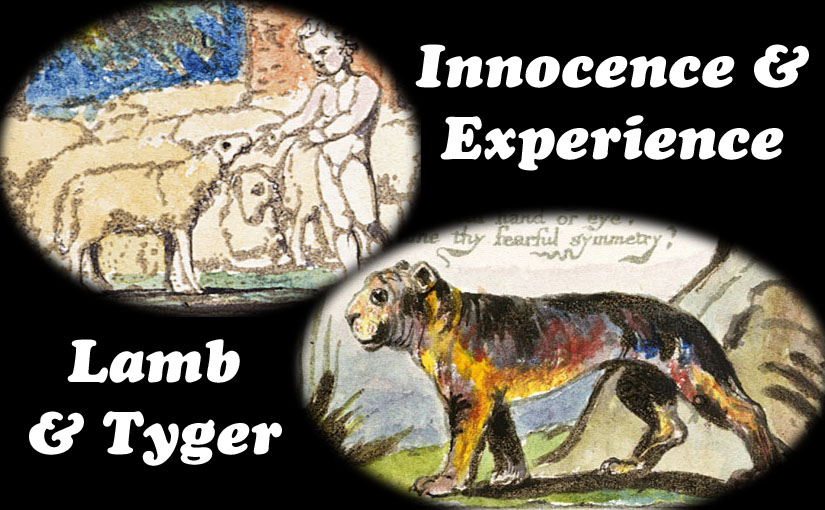 Lamb & Tyger – Innocence & Experience