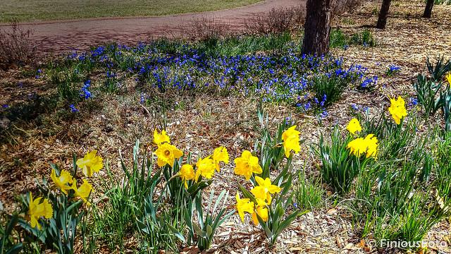 2018-04-09 Spring Has Sprung